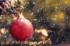 Red Christmas ball decoration hanging on tree with snow effect Stock Images