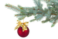 Red  christmas ball decorations   on fir tree Royalty Free Stock Photo