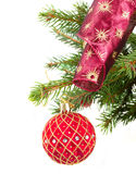Red  christmas ball decorations   on fir tree Stock Image