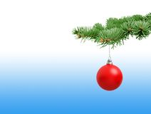 Red Christmas ball on fir branch Stock Image