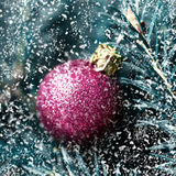 Red christmas ball on fir branch with snowflakes. Christmas bord Royalty Free Stock Photo