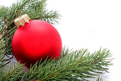 Red Christmas ball and fir branches isolated on white Royalty Free Stock Photography