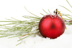 Red christmas ball with fir Royalty Free Stock Photo