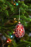 Red christmas ball on firtree Stock Images