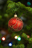 Red christmas ball on firtree Royalty Free Stock Photography