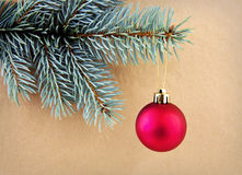Red Christmas ball on green spruce branch  . Royalty Free Stock Photos