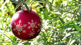 Red christmas ball on green summer background stock video footage
