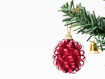Red Christmas ball hanged on green christmas pine tree branch  on white background. Red Christmas ball with gold ribbon hanged on green christmas pine tree Royalty Free Stock Photos