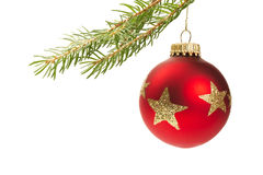 Red christmas ball hanging on a branch Royalty Free Stock Photos