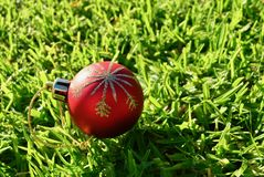 Red Christmas ball decoration on green grass background Christmas in July Royalty Free Stock Photos