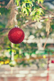 Red christmas ball hanging outdoors Stock Image