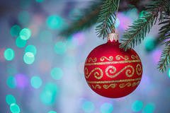 Red Christmas ball hanging on pine branches with festive background. Stock Photo