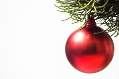 Red Christmas ball hanging on pines tree leaf on white Royalty Free Stock Photography