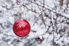 Red Christmas ball hanging on a snowy branch in the winter forest. Merry Christmas and Happy New Year Stock Photos