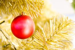Red Christmas ball hanging on Christmas Tree Royalty Free Stock Image