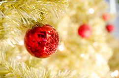 Red Christmas ball hanging on Christmas Tree Royalty Free Stock Photo