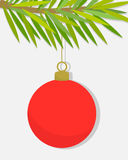 Red Christmas ball. Ornament hanging on fir branch Stock Images