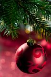 Red christmas ball with ornament on the christmas tree, close up Stock Image