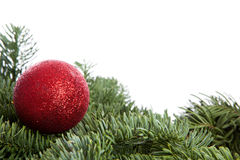 Red Christmas ball on pine tree Royalty Free Stock Image