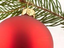 Red Christmas ball and pine twig Royalty Free Stock Image
