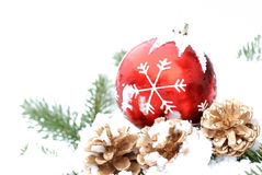 Red christmas ball and pinecone with snow Royalty Free Stock Photography