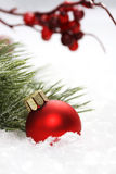 Red christmas ball on snow in front of icing on needles and red rowanberries Stock Image