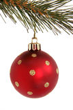 Red Christmas ball with stars. Red ball with stars hanging from branch of Christmas tree Royalty Free Stock Photo