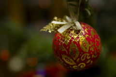 Red christmas ball on a tree Royalty Free Stock Photos