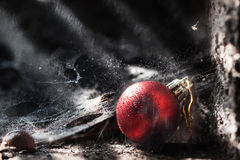 Red christmas ball. In wet cobweb (concept Stock Images