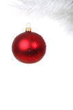 Red Christmas ball on white tree branch. Red Christmas bauble on white branch isolated on white background Stock Photo
