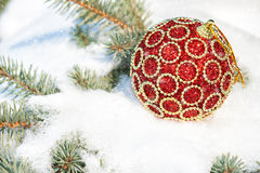 Red christmas ball on winter tree Stock Image