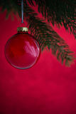 Red christmas ball on the xmas tree on red bokeh background. Merry christmas card. Royalty Free Stock Image