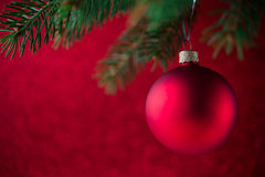 Red christmas ball on the xmas tree on red bokeh background. Merry christmas card. Stock Photos