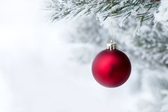 Christmas decorations on the pine branch stock image