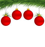 Red Christmas balls on pine branch Stock Photos