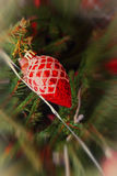 Red Christmas balls on a pine branch.Soft bokeh. Royalty Free Stock Image