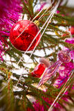 Red Christmas balls on a pine branch with soft bokeh. Royalty Free Stock Images