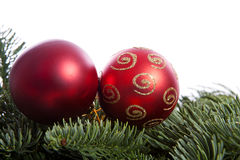 Red Christmas balls on pine tree Stock Photography