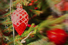 Red Christmas balls on spruce branch with soft bokeh. Royalty Free Stock Image