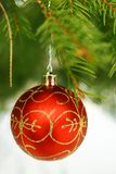 Red Christmas bauble Royalty Free Stock Images