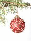 Red Christmas bauble on fir-tree brunch Royalty Free Stock Photo