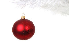 Red christmas bauble on white branch Royalty Free Stock Photography