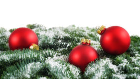 Red Christmas baubles and snow on fir branches Stock Photos