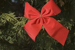 Red Christmas bow 2. Close up of a red Christmas bow on Christmas tree stock photo