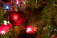 Red Christmas Bulb with Colored Lights on Tree Royalty Free Stock Images