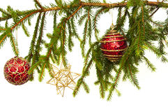 Red Christmas bulbs on a pine branch Stock Photo