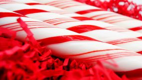 Christmas Candy Canes Close-Up on Red Royalty Free Stock Images