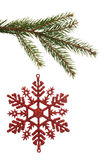 Red christmas decoration hanging from branch Stock Photo