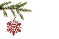 Red christmas decoration hanging from branch Royalty Free Stock Photo