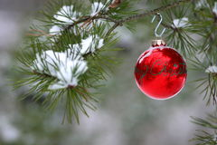 Red Christmas Decoration On Snow-covered Pine Tree Outdoors Stock Photo